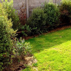 Proyecto jardin pperez