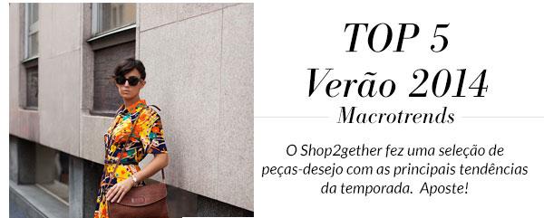 Top 5 Verão 2014 Macrotrends