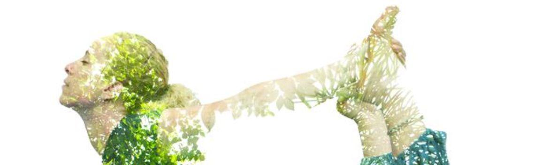 Shutterstock 170538488.crop 700x210 0,73.resize 1170x