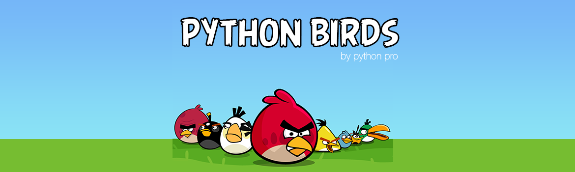Pythonbirdstest.crop 1170x350 0,0
