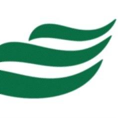 logotipo BANESE