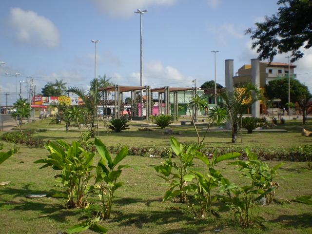 Floricultura Ananindeua - Imagem 2