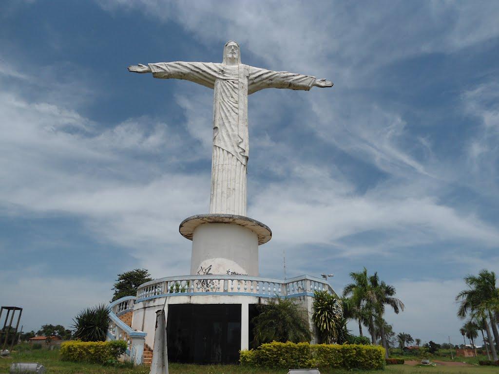 Floricultura Araguaína - Imagem 1