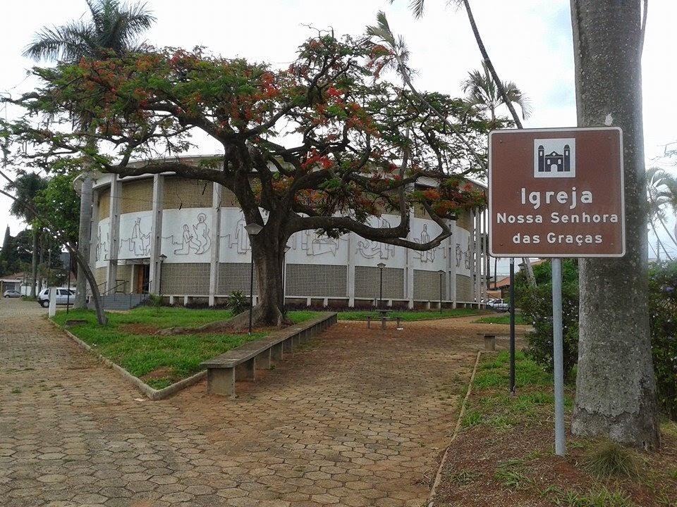Floricultura em Araraquara  - Foto 2
