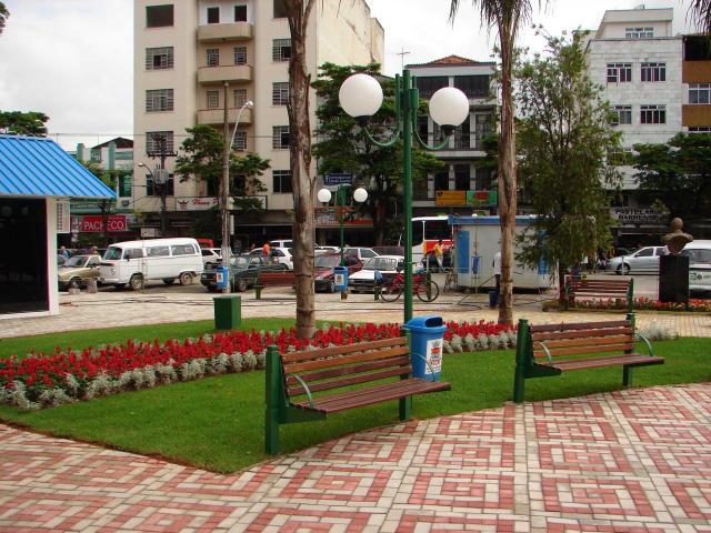 Floricultura Barra do Piraí - Imagem 4