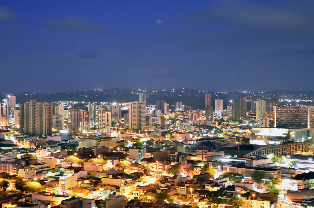 Floricultura Caruaru - Imagem 1