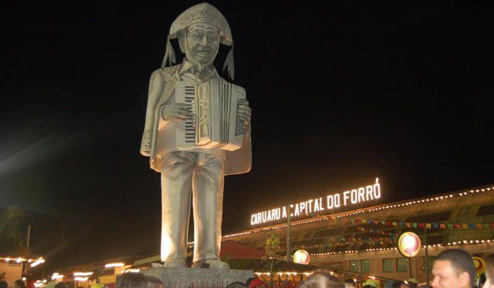 Floricultura Caruaru - Imagem 4