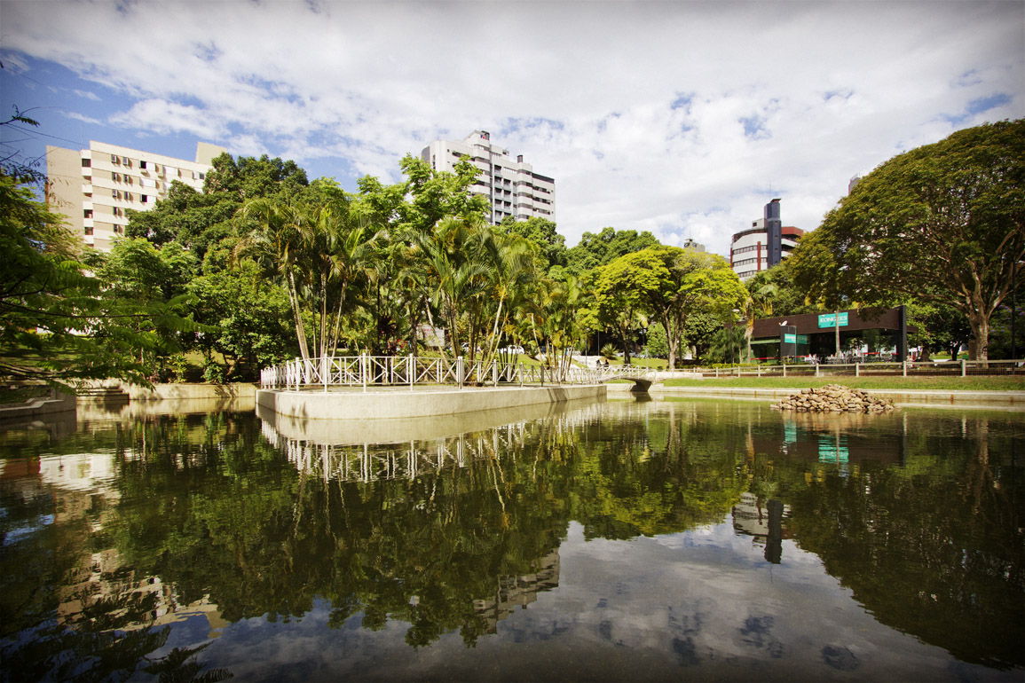Floricultura Criciúma - Imagem 4