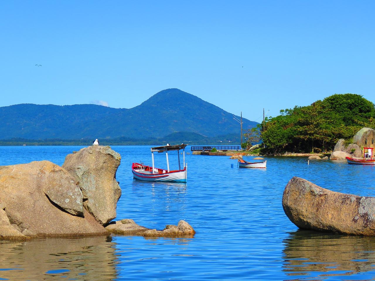 Floricultura Florianópolis - Imagem 1