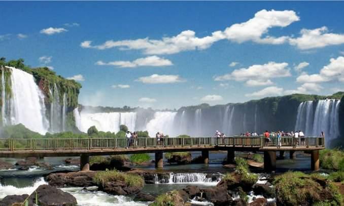 Floricultura Foz do Iguaçu - Imagem 1