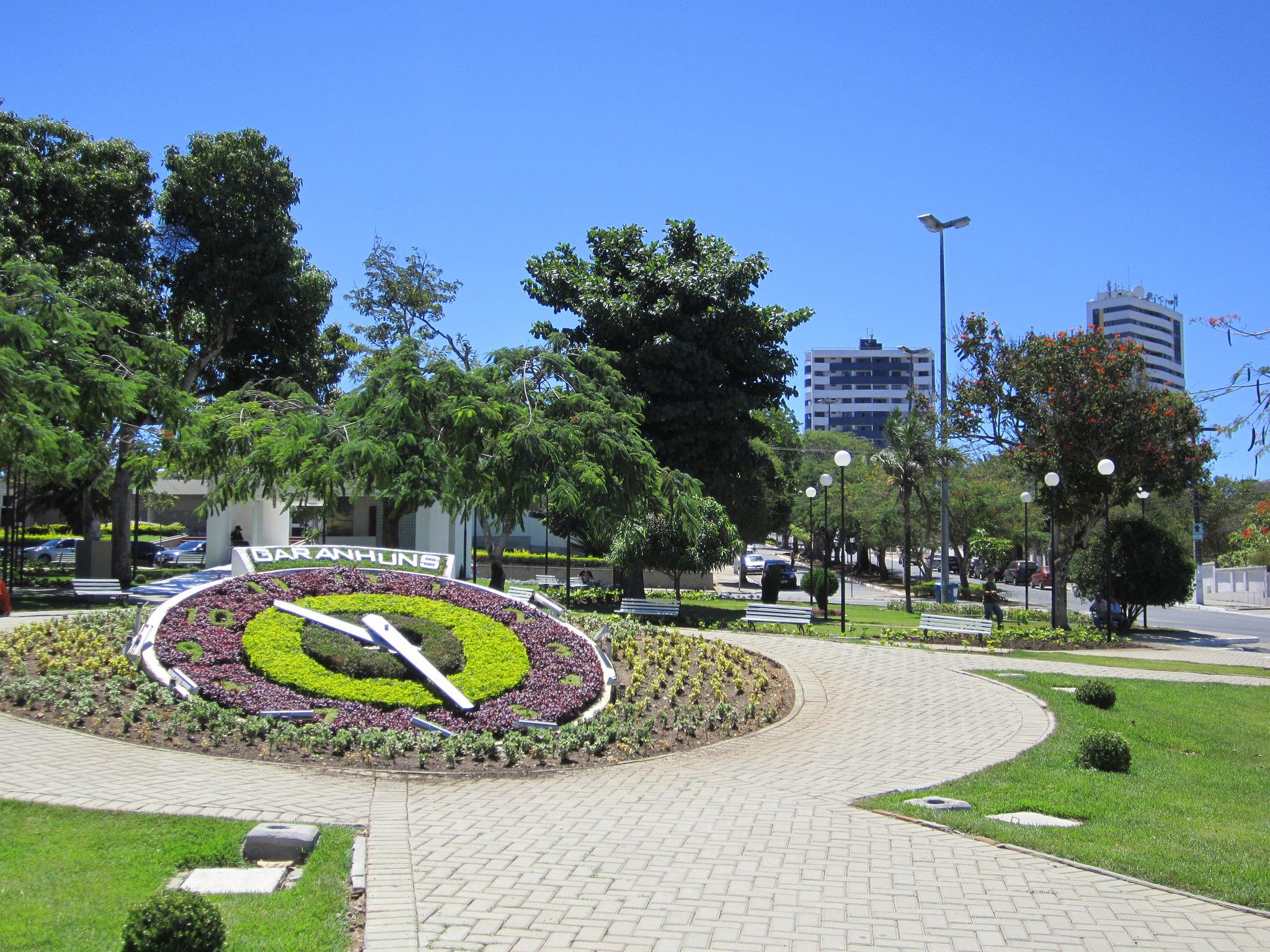 Floricultura Garanhuns - Imagem 1