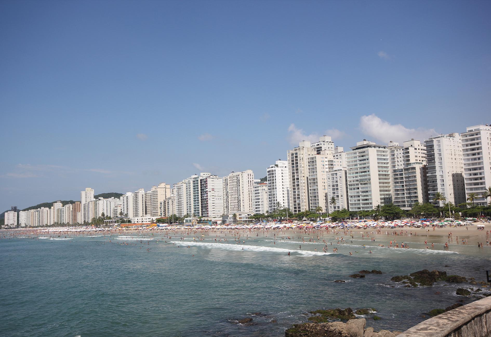 Floricultura Guarujá - Imagem 1