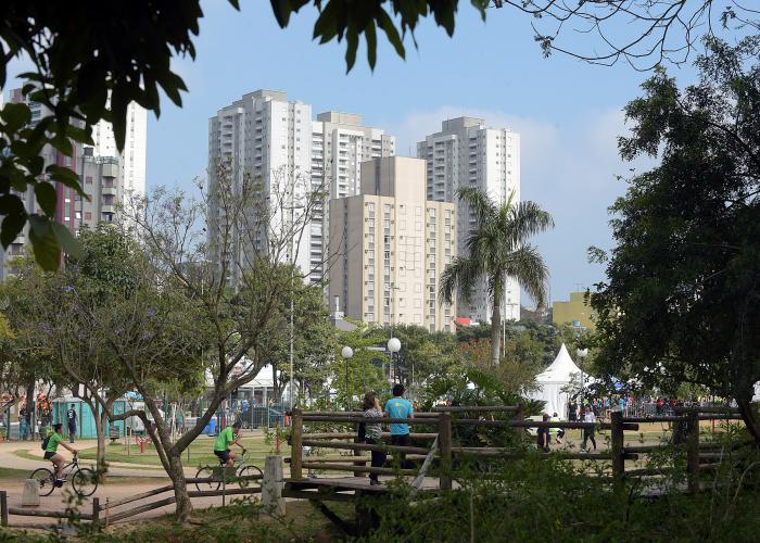 Floricultura Guarulhos - Imagem 2