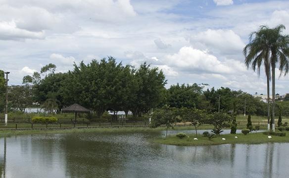 Floricultura Itaquaquecetuba - Imagem 4