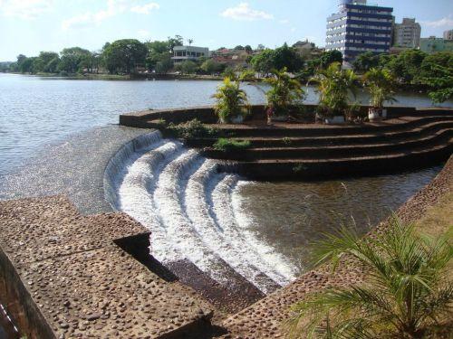 Floricultura Londrina - Imagem 1