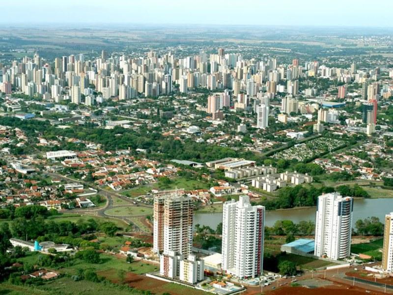 Floricultura Londrina - Imagem 3