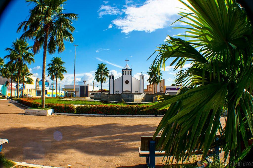 Floricultura Marabá - Imagem 2