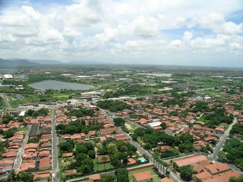 Floricultura Maracanaú - Imagem 4