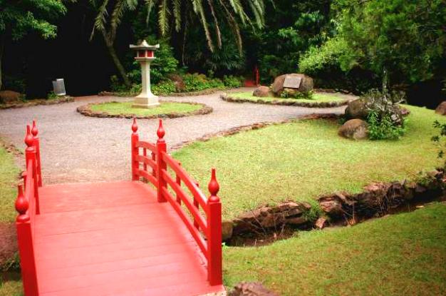 Floricultura Maringá - Imagem 4