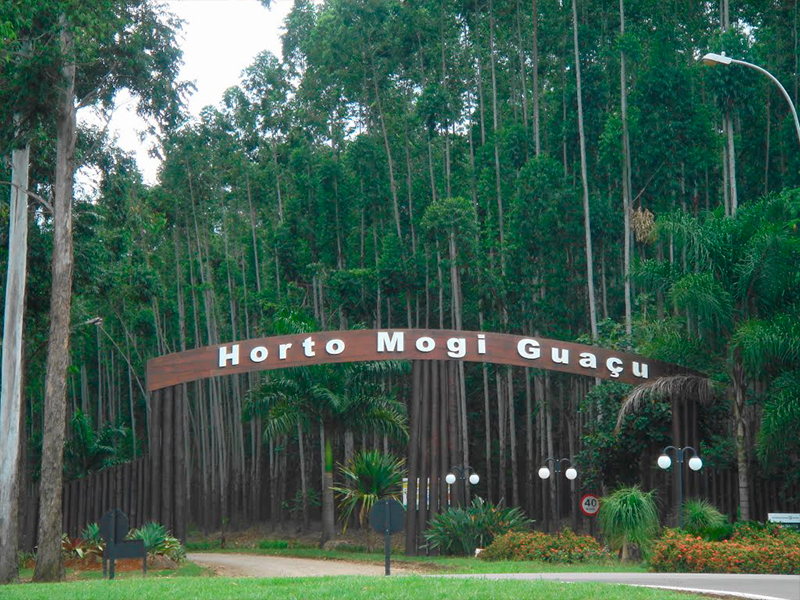 Floricultura Mogi Guaçu - Imagem 4