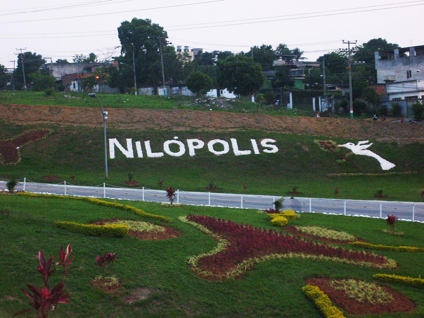 Floricultura Nilópolis - Imagem 2