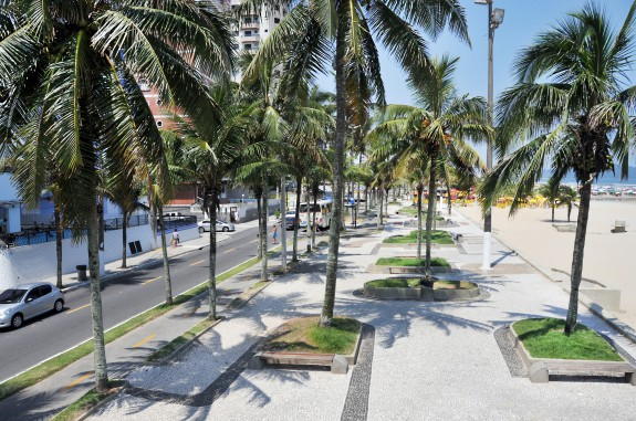 Floricultura Praia Grande - Imagem 4