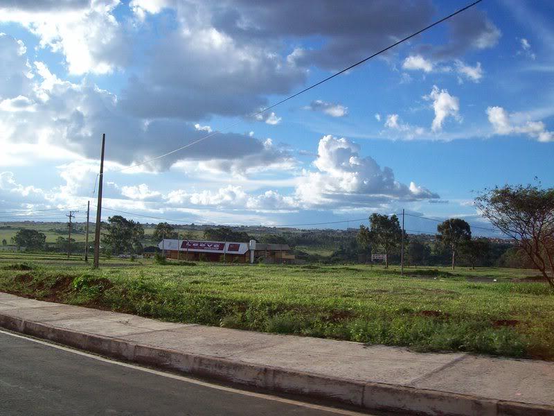 Floricultura Recanto das Emas - Imagem 4