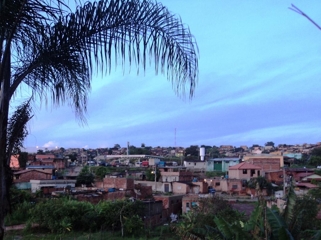 Floricultura Ribeirão das Neves - Imagem 1
