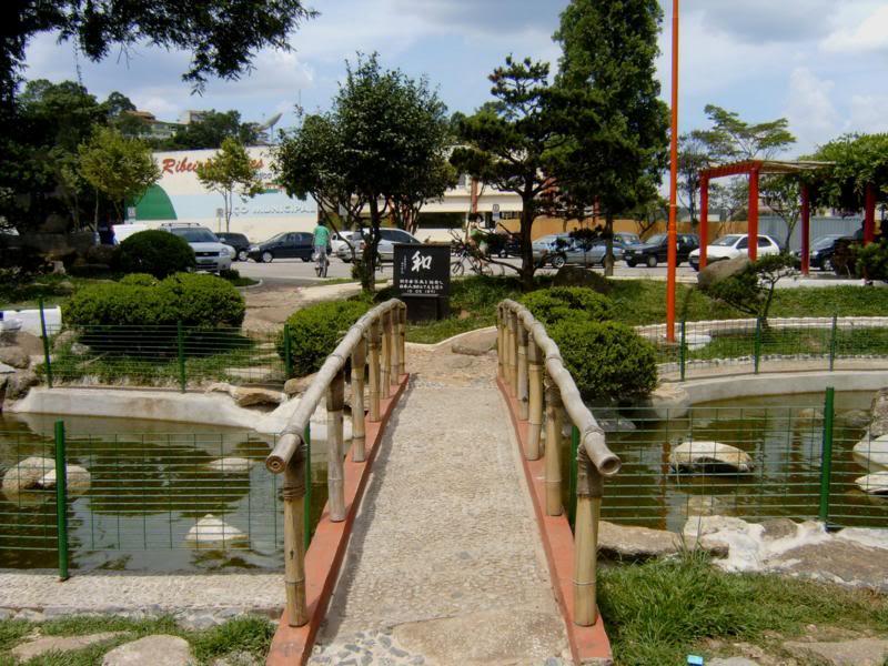 Floricultura Ribeirao Pires - Imagem 3