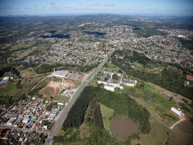 Floricultura Viamão - Imagem 2