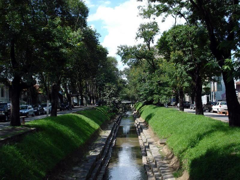Floricultura Volta Redonda - Imagem 3