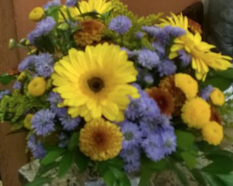 Flores Araguari - Floricultura Araguari - Produto 1