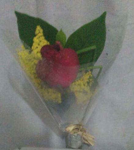 Flores Assis - Floricultura Assis - Produto 1