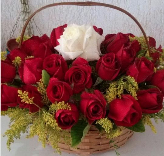 Flores Belford Roxo - Floricultura Belford Roxo - Produto 1