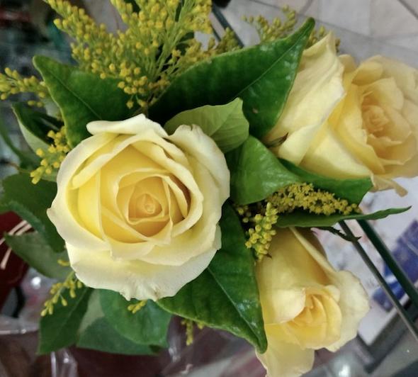Flores Cachoeiro de Itapemirim - Floricultura Cachoeiro de Itapemirim - Produto 1