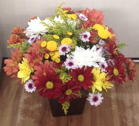 Flores Caraguatatuba - Floricultura Caraguatatuba - Produto 1