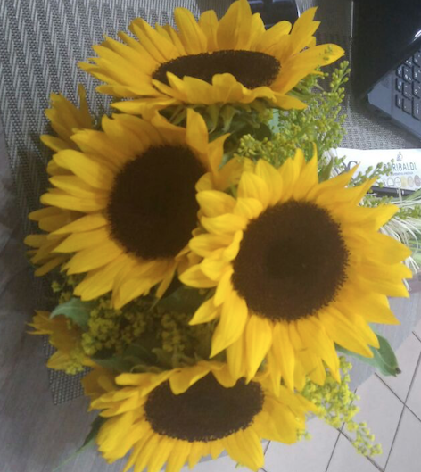 Flores Colatina - Floricultura Colatina - Produto 1