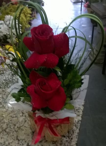 Flores Criciúma - Floricultura Criciúma - Produto 1
