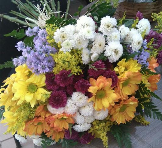 Flores Guarapuava - Floricultura Guarapuava - Produto 1