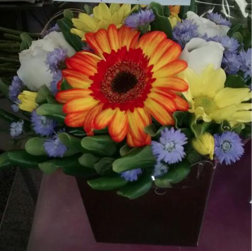 Flores Nossa Senhora do Socorro - Floricultura Nossa Senhora do Socorro - Produto 1