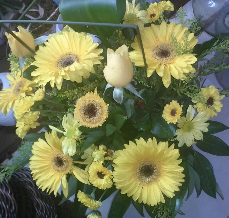 Flores Balneario Camburiú - Floricultura Balneario Camburiú - Produto 2