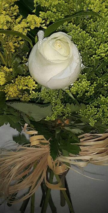 Isabela Flores em Porto velho Produto 2