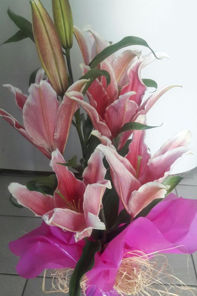 Flores Rio Claro - Floricultura Rio Claro - Produto 2