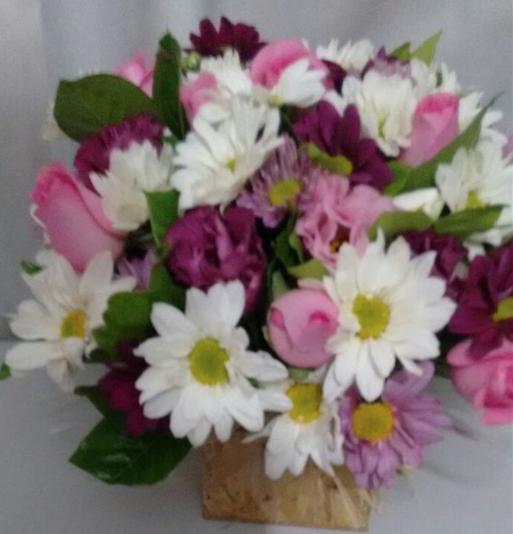 Isabela Flores em Taboão da serra Produto 2