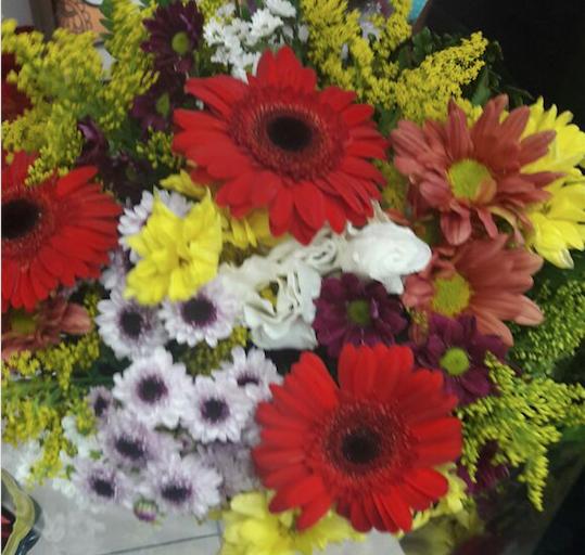 Flores Valparaíso de Goias - Floricultura Valparaíso de Goias - Produto 2