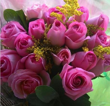Flores Viamão - Floricultura Viamão - Produto 2