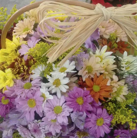 Flores Assis - Floricultura Assis - Produto 3