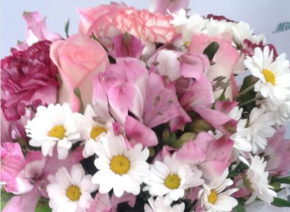 Flores Bayeux - Floricultura Bayeux - Produto 3