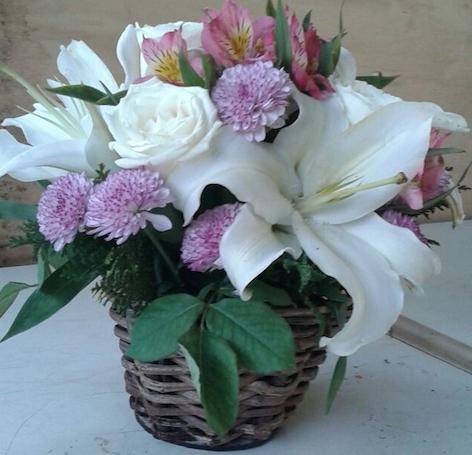 Flores Brusque - Floricultura Brusque - Produto 3