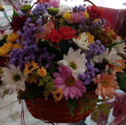 Flores Cachoeiro de Itapemirim - Floricultura Cachoeiro de Itapemirim - Produto 3